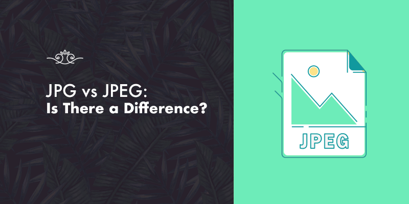 JPG vs JPEG File Formats: Is There a Difference?