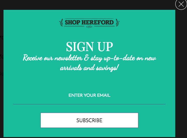 How to build an email list from scratch sign up incentive