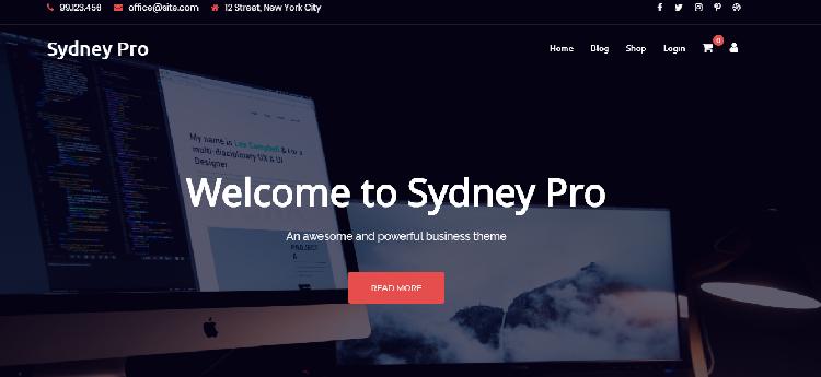Best WooCommerce themes: Sydney Pro