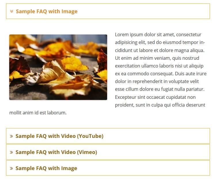 faqplus example