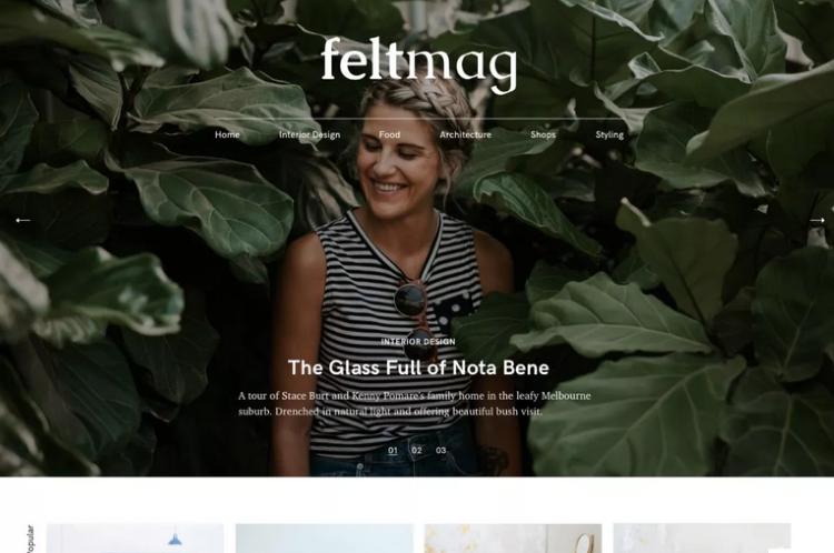 best-magazine-themes-felt