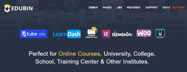 best-wordpress-learndash-themes-edubin